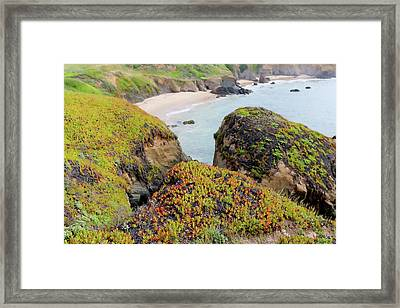 Beach Coves At Pigeon Point Framed Print by Art Block Collections