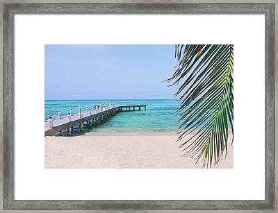 Beach Dreams Framed Print by Iryna Goodall