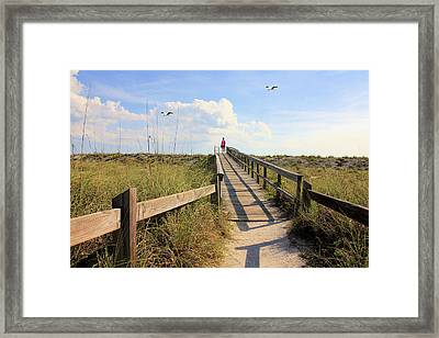 Beach Entrance Framed Print by Rosalie Scanlon