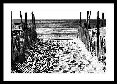 White Fence Photographs Framed Prints