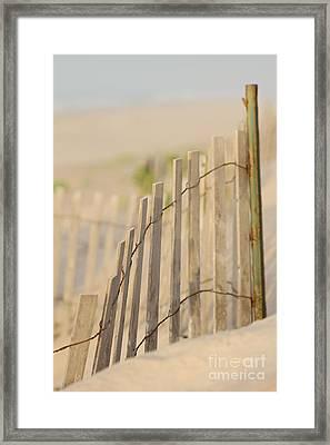 Beach Fences Framed Print