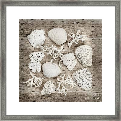 Beach Finds Framed Print