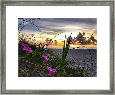 Beach Flowers Framed Print