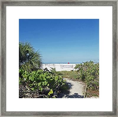 Beach Fun Framed Print by Pepsi Freund