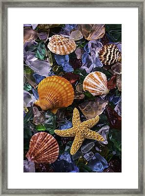 Beach Glass With Starfish Framed Print by Garry Gay