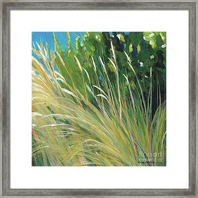Beach Grass 1 Framed Print