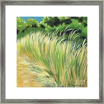 Beach Grass 4 Framed Print