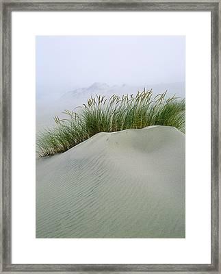 Beach Grass And Dunes Framed Print
