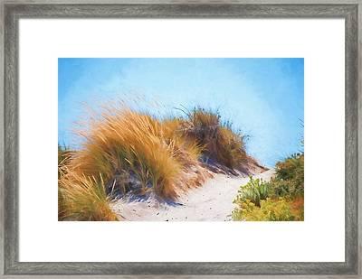 Beach Grass And Sand Dunes Framed Print
