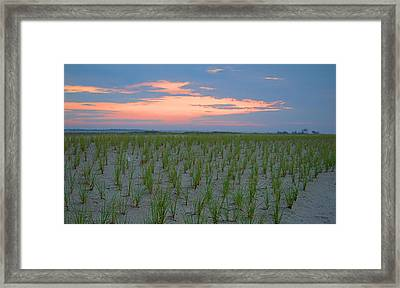 Framed Print featuring the photograph Beach Grass Farm by  Newwwman