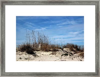 Beach Grasses On The Dunes Framed Print by Rosanne Jordan