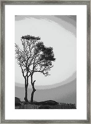 Beach Halo Framed Print