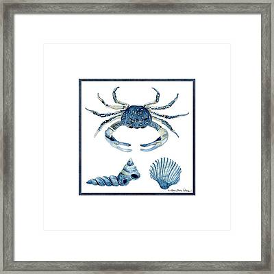 Beach House Sea Life Crab Turban Shell N Scallop Framed Print by Audrey Jeanne Roberts