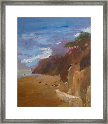 Beach In Santa Barbara Framed Print by Irena  Jablonski