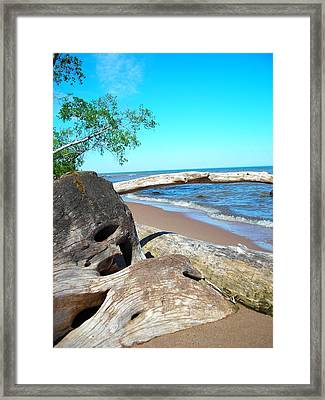 Beach Lodging Framed Print by Peter Mowry