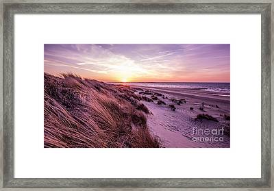 Beach Of Renesse Framed Print