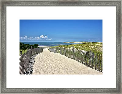 Framed Print featuring the photograph Beach Path At Cape Henlopen State Park - The Point - Delaware by Brendan Reals