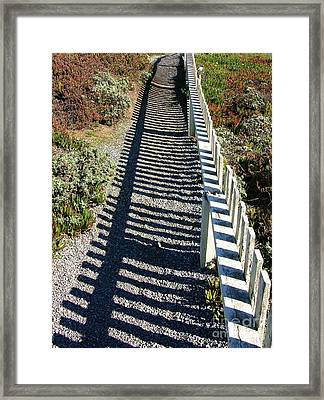 Beach Path Framed Print by Carol Groenen