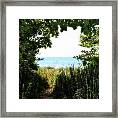 Framed Print featuring the photograph Beach Path With Snake Grass by Michelle Calkins