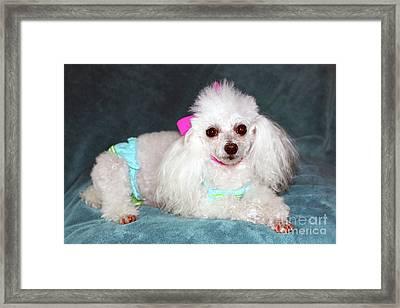 Beach Poodle Girl Framed Print
