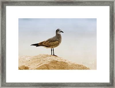 Framed Print featuring the photograph Beach Pose by Deborah Benoit