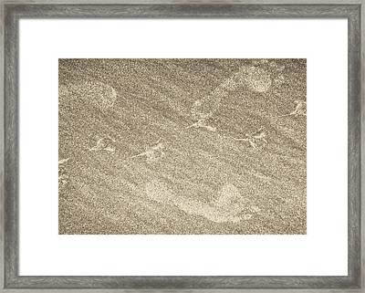Beach Prints Framed Print by JAMART Photography