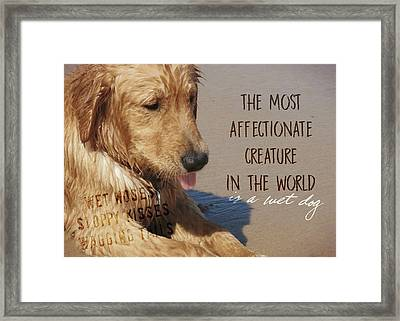 Beach Pup Quote Framed Print by JAMART Photography