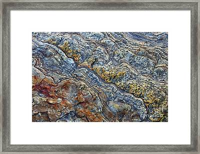 Beach Rock Pattern  Framed Print by Tim Gainey