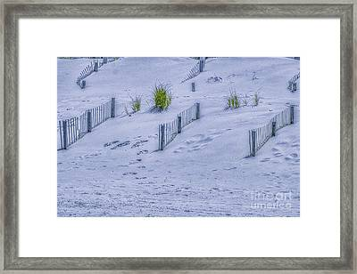 Beach Sand Dunes And Fence Framed Print by Randy Steele