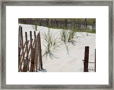 Beach Scene Framed Print by Dennis Stein