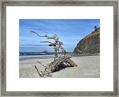 Framed Print featuring the photograph Beach Sculpture by Peggy Hughes