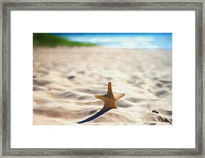 Beach Starfish Wood Texture Framed Print by Dan Sproul