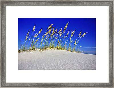 Beach Time Framed Print by JC Findley