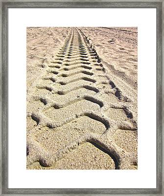 Beach Tracks Framed Print
