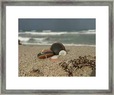 Beach Treasures 1 Framed Print by Kimberly Mohlenhoff