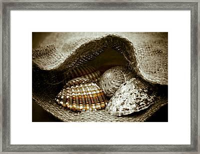 Beach Treasures Framed Print by Frank Tschakert