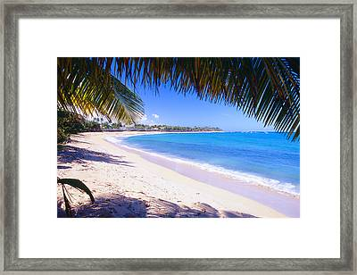 Beach View Under A Palm Tree Framed Print by George Oze