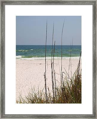 Beach View With Grass Framed Print by James Granberry