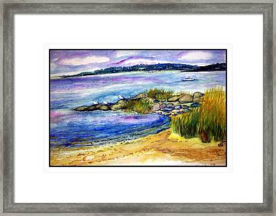 Beach With Birds Framed Print by Siona Koubek