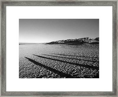 Beach With Shadows Framed Print by Sascha Meyer