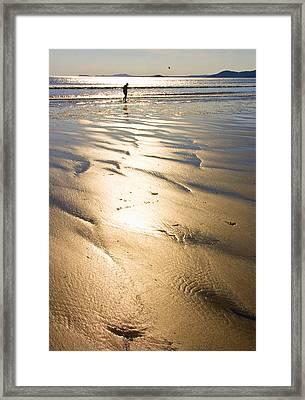 Beachcomber Framed Print by Aleck Rich Seddon