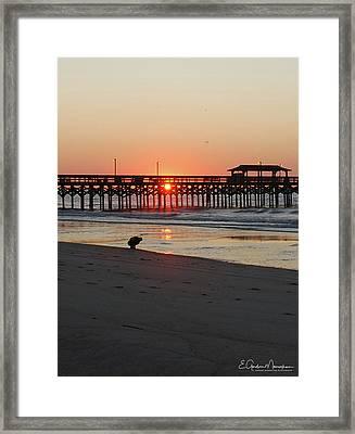 Beachcomber Framed Print by Gordon Mooneyhan