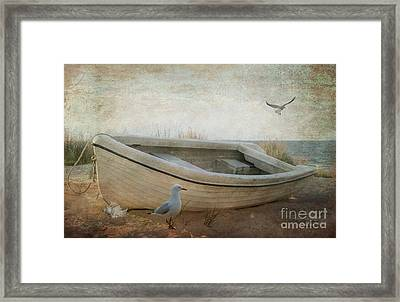Beached Framed Print by Chris Armytage