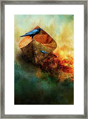 Beached Crow Framed Print