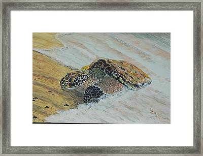 Beached For Love Framed Print by KatNap