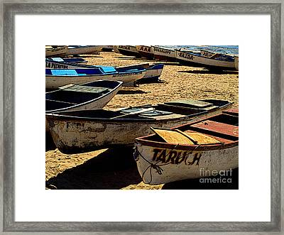 Beached Framed Print by Mexicolors Art Photography