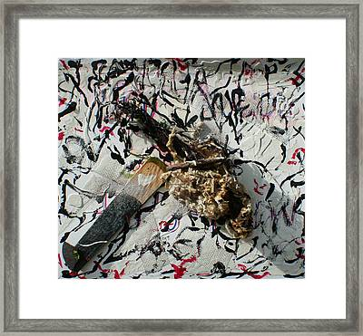 Beachfound Items Framed Print by Biagio Civale