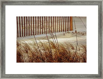 Beachside Beauty Framed Print by Barry Jones