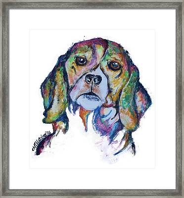 Beagle Framed Print
