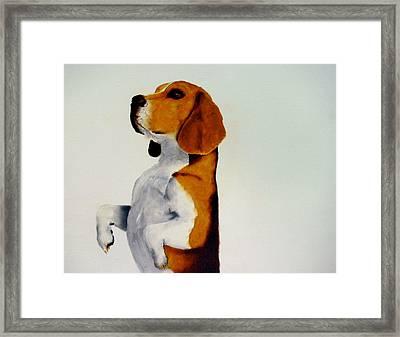 Beagle Framed Print by Dick Larsen